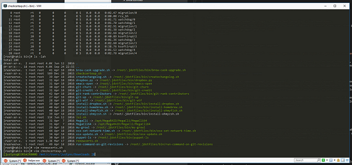Example Cmder window running Bash